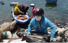 Gần 140 tấn hải sản nuôi lồng bè tại Đà Nẵng cần được hỗ trợ tiêu thụ