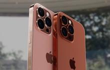iPhone 13 có thể bị chậm sản xuất vì lý do khó ai ngờ