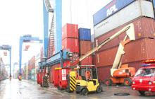 Cảng Tân Cảng - Cát Lái tạm dừng việc tiếp nhận hàng hóa