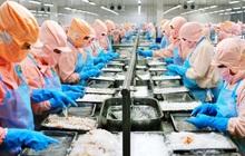 Dự phòng tổn thất đầu tư ở mức cao, quý 2 công ty mẹ Minh Phú (MPC) lãi 76 tỷ đồng, giảm 28% so với cùng kỳ 2020