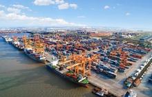 Cổ phiếu cảng biển - vận tải biển đồng loạt tăng mạnh ngày 2/8, nhiều mã kịch trần