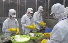 Doanh nghiệp thủy sản kiến nghị các giải pháp để ổn định sản xuất, xuất khẩu
