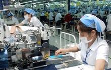 Đề xuất giảm nhiều loại thuế doanh nghiệp