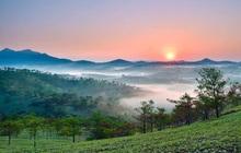 Đại Quang Minh lập quy hoạch khu đô thị hơn 530ha tại Đà Lạt