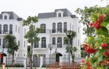 """Giới siêu giàu Hà Nội sẵn sàng trả gần 200 tỷ cho một dinh thự nhưng nhà đầu tư không dám """"lướt sóng"""""""