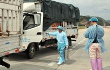 Trung Quốc tạm dừng nhập thanh long tại cầu phao tạm Đông Hưng