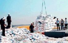 Việt Nam nhập khẩu 3,2 triệu tấn phân bón trong 8 tháng