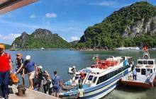 Tín đồ du lịch có thể đến Quảng Ninh nghỉ dưỡng từ tháng 11, miễn sao tiêm đủ 2 mũi vaccine và xét nghiệm PCR âm tính trong 48h