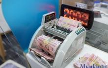 SSI: 'Chính sách tiền tệ có thể nới lỏng thêm để phục hồi kinh tế'