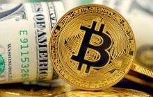 """Giá USD và vàng đang """"nín thở"""", coin và tiền tệ rủi ro tăng vọt trước những thời khắc quan trọng"""