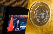 Chủ tịch Tập Cận Bình cam kết Trung Quốc ngừng xây dựng nhà máy nhiệt điện than nước ngoài