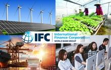 IFC: 5 lĩnh vực sẽ tạo ra khác biệt cho tăng trưởng kinh tế Việt Nam nếu có sự xuất hiện của doanh nghiệp tư nhân