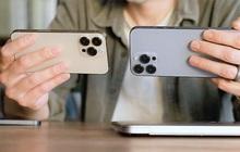 """iPhone 13 Pro Max được nhiều người chọn mua, bản mini bị người Việt """"hắt hủi"""""""