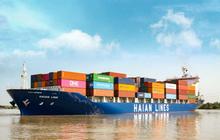 Cổ phiếu HAH tăng gần gấp 4 lần từ đầu năm, Vận tải Hải An đưa 1,4 triệu cổ phiếu quỹ ra bán