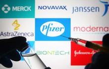 """Fortune: Một loại vaccine bảo quản được ở nhiệt độ lạnh bình thường có thể """"vươt mặt"""" Pfizer, Moderna nếu được WHO phê duyệt?"""