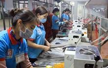 Gần 13 triệu lao động được hỗ trợ từ Quỹ bảo hiểm thất nghiệp