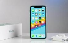 Quên iPhone 13 đi, đây mới là chiếc iPhone đáng mua nhất vào lúc này