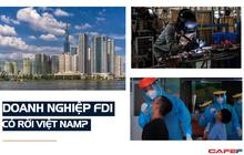 Chuyên gia quốc tế: 'Chúng tôi vẫn chứng kiến nhiều nhà đầu tư lên kế hoạch rót vốn vào Việt Nam!'