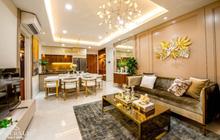 Lợi nhuận hấp dẫn từ cho thuê căn hộ cao cấp tại Bình Dương