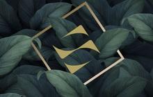 Nâng tầm nhận diện thương hiệu, SonKim Land sẵn sàng cho những bước phát triển nhảy vọt
