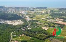 Phân khúc đất nền biệt thự nghỉ dưỡng ven rừng thu hút giới đầu tư