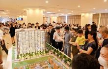 Lợi thế đầu tư căn hộ thương mại dưới 1 tỷ Osimi Phú Mỹ