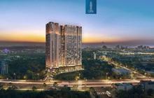 Thuận An chiếm vị thế hàng đầu trên thị trường bất động sản