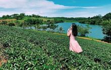 Điểm đến mới cho nhà đầu tư bất động sản tại Lâm Đồng