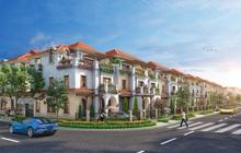 Tối ưu không gian sống với nhà phố diện tích lớn tại Aqua City