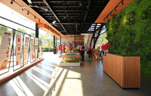 Vườn trải nghiệm cà phê NESCAFÉ WASI - Đưa giá trị cà phê Việt đến gần hơn với người tiêu dùng