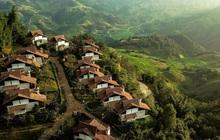 Nhiều đại gia bất động sản tìm kiếm nhà vườn view đồi núi ở Bảo Lộc