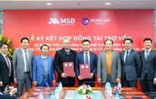 MSB công bố gói tín dụng 30.000 tỷ đồng dành riêng cho các dự án năng lượng tái tạo
