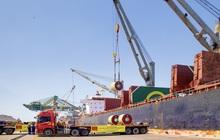 HSG thiết lập kỷ lục xuất khẩu mới: Sản lượng vượt mốc 120 nghìn tấn/tháng