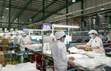 Nhựa An Phát Xanh (AAA) dự kiến doanh thu, lợi nhuận quý I tăng mạnh