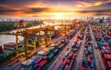 Việt Nam vào Top 10 thị trường Logistics mới nổi toàn cầu, BĐS nào sẽ hưởng lợi?