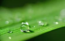 Khí chất của giọt nước khoáng và bài học thành công cho người trẻ