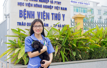 Bệnh viện thú y – nơi cách ly an toàn cho thú cưng hỗ trợ công tác phòng chống Covid-19