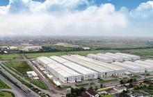 An Phát Holdings công bố kết quả kinh doanh khả quan Quý 1/2021