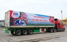 MM Mega Market đồng hành cùng Bắc Giang tiêu thụ hàng trăm tấn nông sản