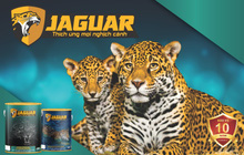 Sơn Jaguar bảo hành 100% - Tưởng không thật mà thật không tưởng