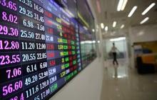 Cơ hội đầu tư: PGT sẽ mở bán 384.196 cổ phiếu quỹ từ 09/08/2021