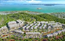Bất động sản Hạ Long: Sức hút của đô thị ở có quy mô lớn tại Bãi Cháy