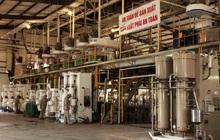 Cổ phiếu HPP tăng gấp đôi nhờ cung cấp dịch vụ cho ngành thép