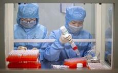 Buổi sáng thứ hai liên tiếp Việt Nam không có ca mắc COVID-19 mới