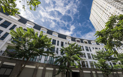 Văn Phú Invest (VPI) triển khai phương án phát hành 40 triệu cổ phiếu trả cổ tức