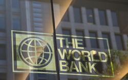 Ngân hàng Thế giới: FDI tháng 8 của Việt Nam dường như tạm ngưng