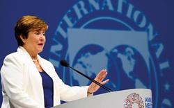 IMF cảnh báo chiến tranh thương mại nếu không có thoả thuận thuế toàn cầu