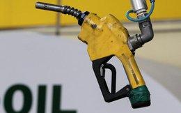 Giá dầu bật tăng mạnh nhất trong gần 2 năm rưỡi