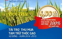 VietABank cho doanh nghiệp vay thu mua thóc gạo với lãi suất ưu đãi 6,99%