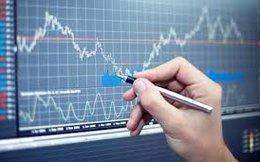 Tổng quan thị trường chứng khoán 2015